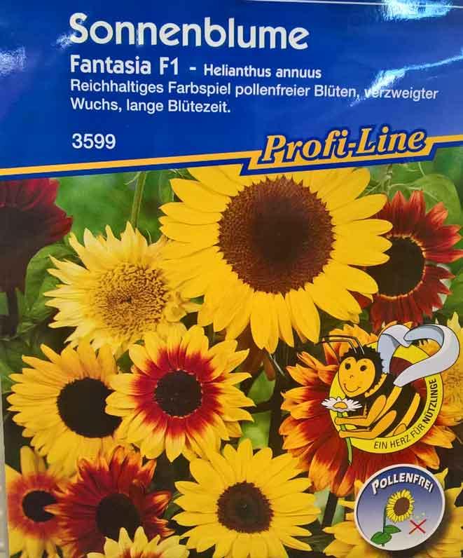 Sonnenblumen-Saatgut pollenfrei