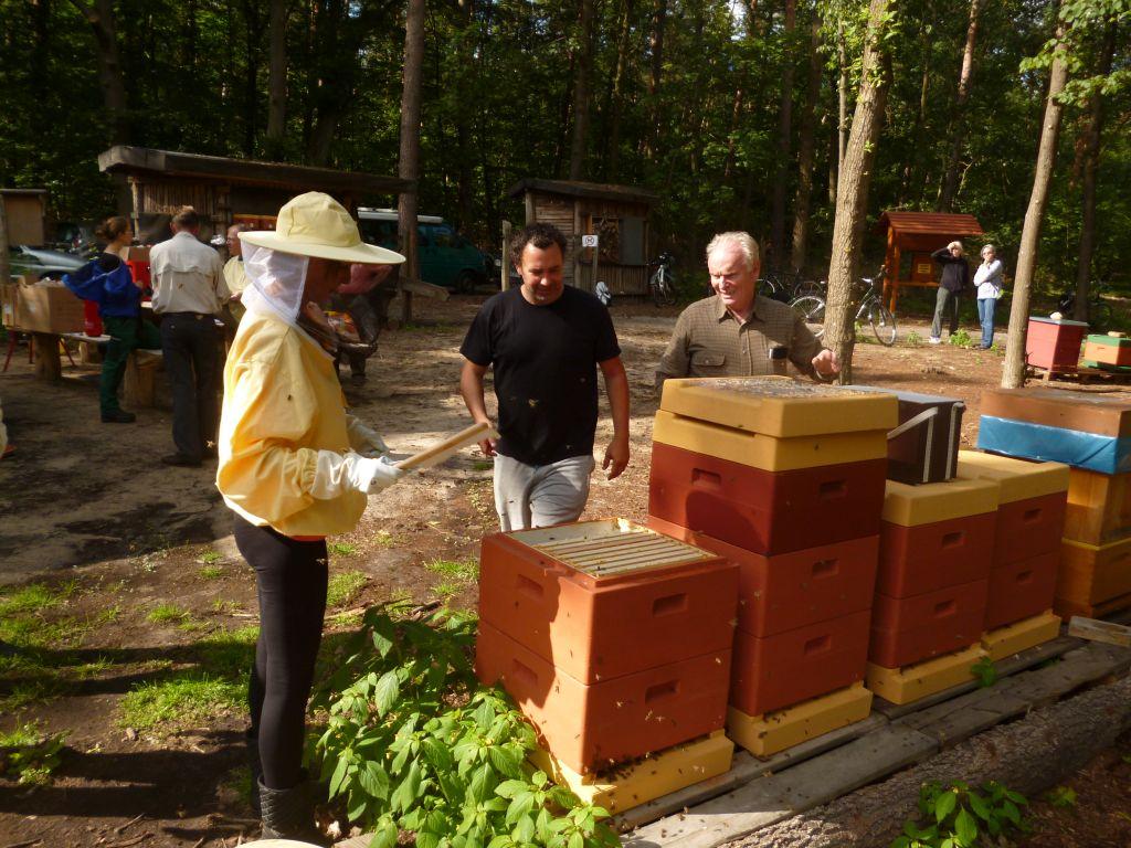 Lehrbienenstand in Hohengatow